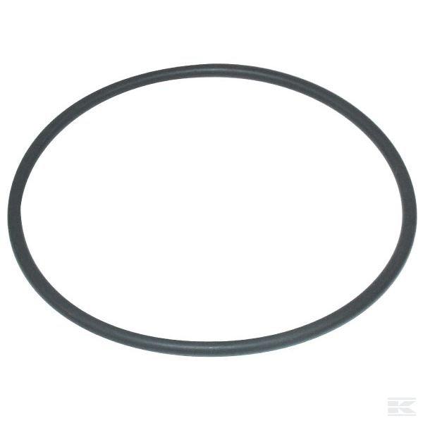6310005ZКольцо круглого сечения для магнето 166,70x6,99