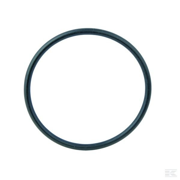 100552A1Уплотнительное кольцо CNH