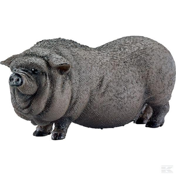 13747SCHВьетнамская вислобрюхая свинья